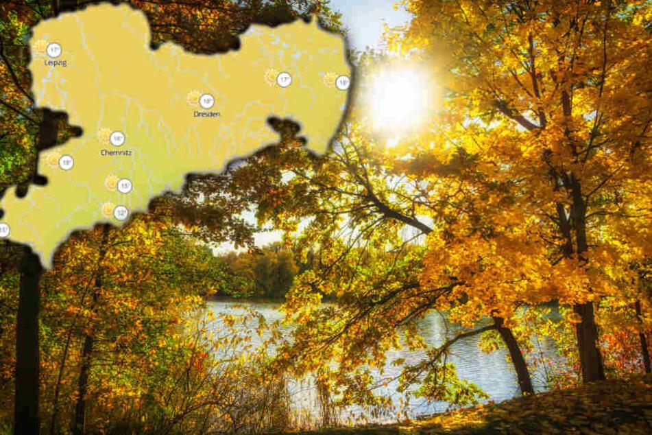 Wetter in Sachsen: Der Herbst zeigt sich von seiner schönsten Seite