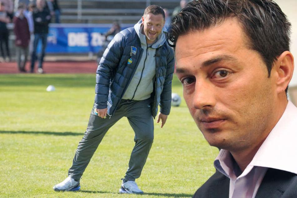 Ante Covic könnte auf Pal Dardai folgen.