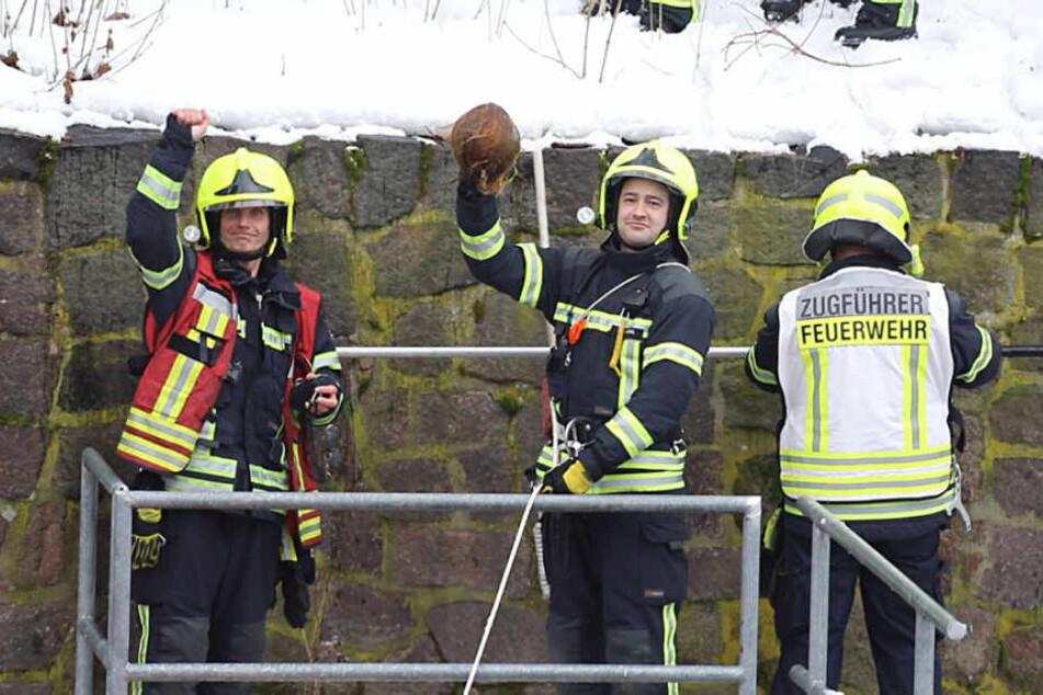 Die Feuerwehr rettete die Kokosnuss.