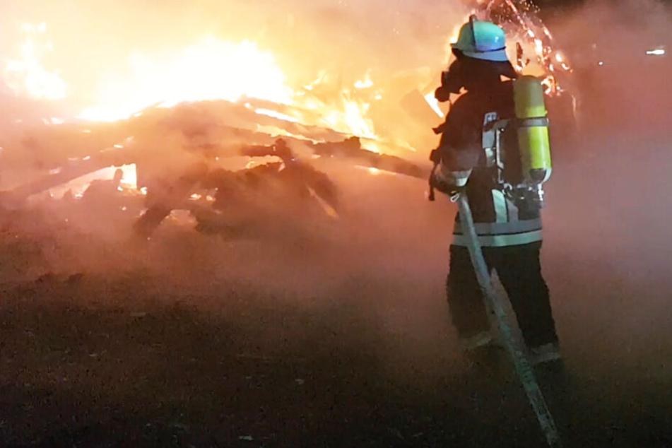 Tiere sterben in Flammen-Inferno, zwei Menschen bei Feuer verletzt