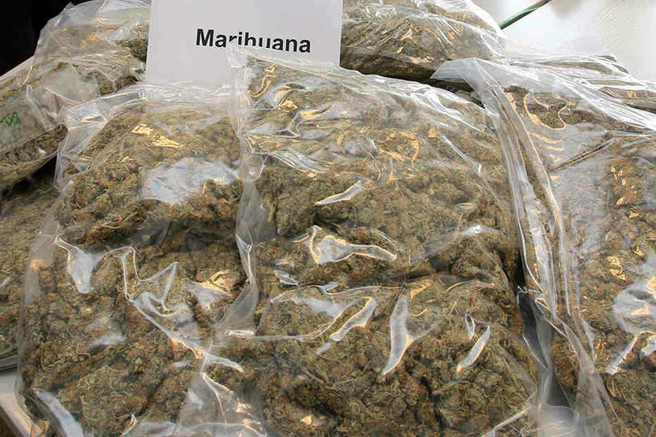 Rund 1,5 Tonnen Marihuana soll der Mann gekauft haben, um damit zu dealen. (Symbolbild)