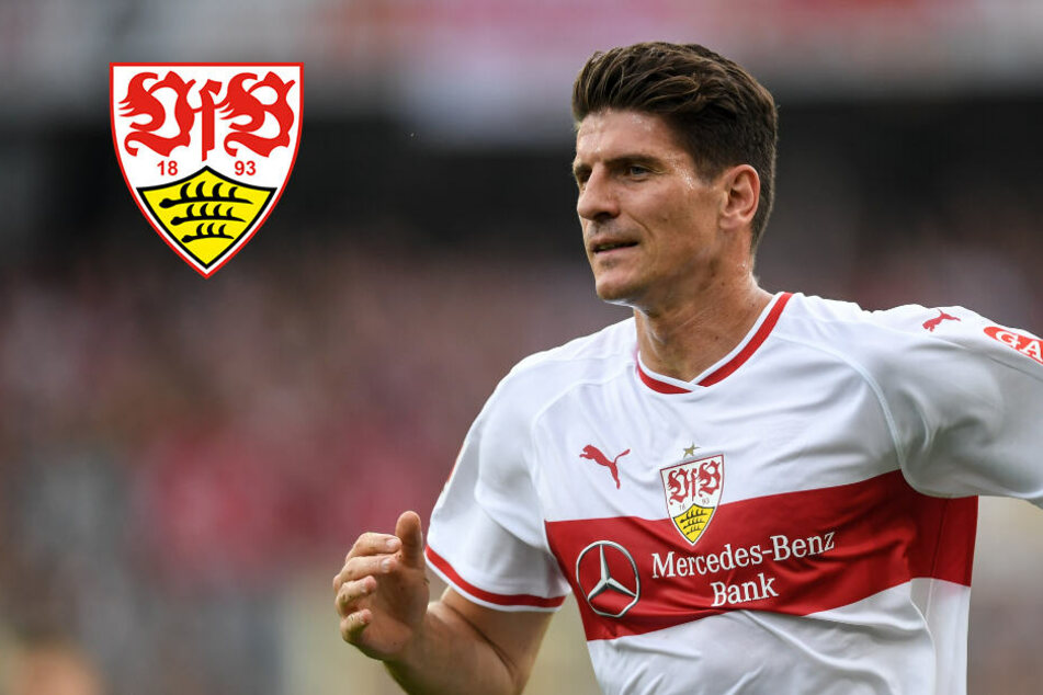 VfB-Torjäger Gomez: Das war mein größter Sieg