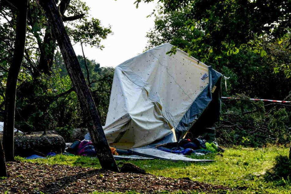 Ein Jugendlicher wurde in Baden-Württemberg in einem Zelt von einem Baum erschlagen.