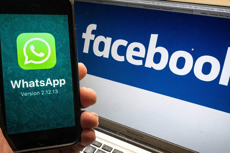 Wenn man den neuen Bedingungen von WhatsApp nicht widerspricht, gibt die App die eigene Handynummer und möglicherweise andere Daten an Facebook weiter.