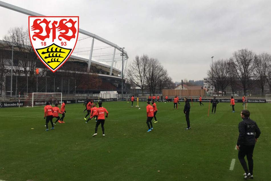 Mit Darko Churlinov: So verlief die erste Trainingseinheit unter VfB-Coach Matarazzo