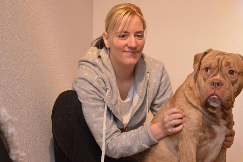 Mutigster Hund von Zwickau: Karlino schlug Einbrecher in Flucht