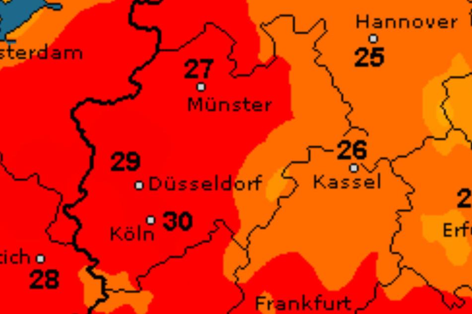 26 Grad sind am Montag drin!