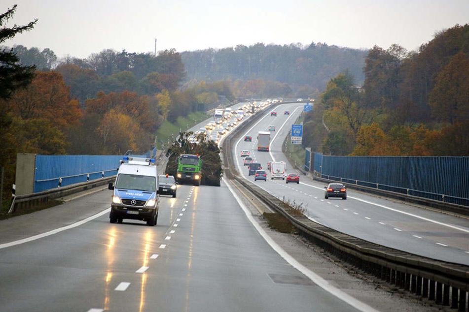Bummeltransport: Auf zweispurigen Abschnitten der A72 sorgte der Weihnachtsbaum-Tross für Frust in  Richtung Chemnitz.