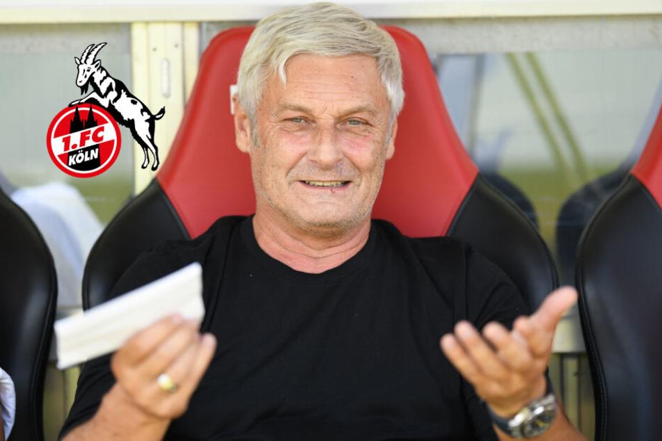 Armin Veh verlässt 1. FC Köln nach der Saison