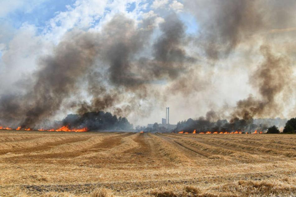 Auch ein Feld im Landkreis Rotenburg stand in Flammen.