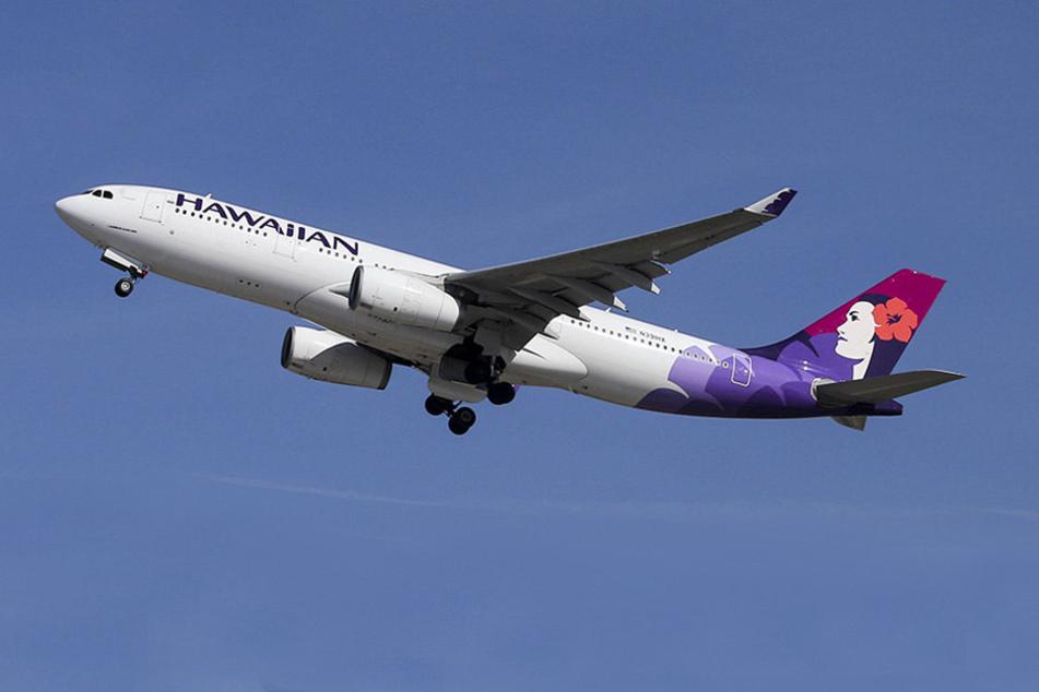 """Die Fluggesellschaft """"Hawaiian Airlines"""" besteht darauf, korpulente Passagiere zu wiegen."""