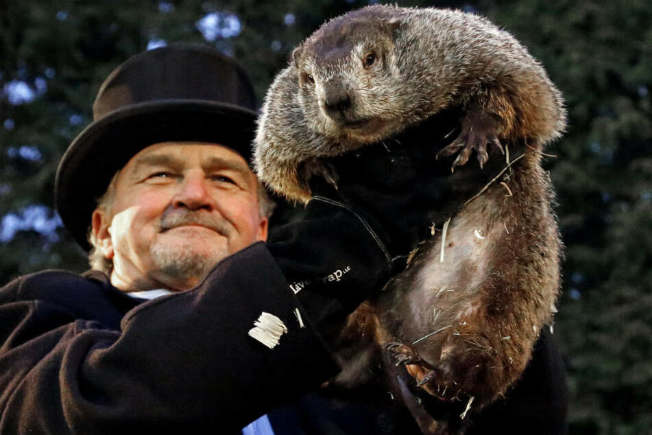 Murmeltier Phil sagt für die USA einen langen Winter voraus.