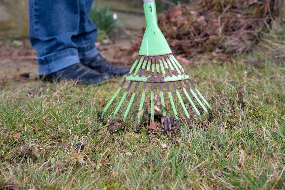 In Nordsachsen fand ein Mann bei der Gartenarbeit Munition und Waffenteile aus dem Zweiten Weltkrieg. (Symbolbild)