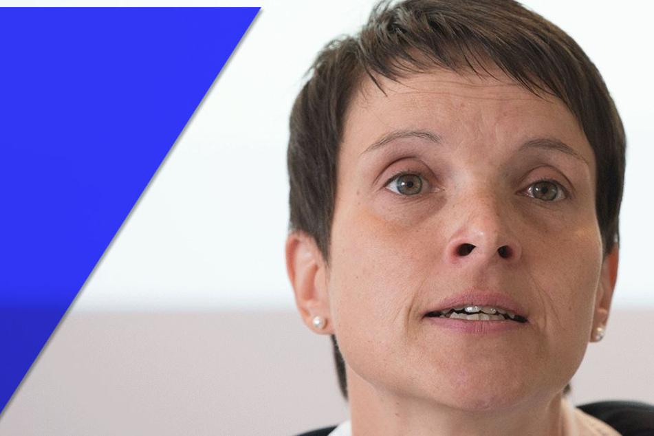 Neue Petry-Partei wurde vor (!) der Bundestagswahl angemeldet