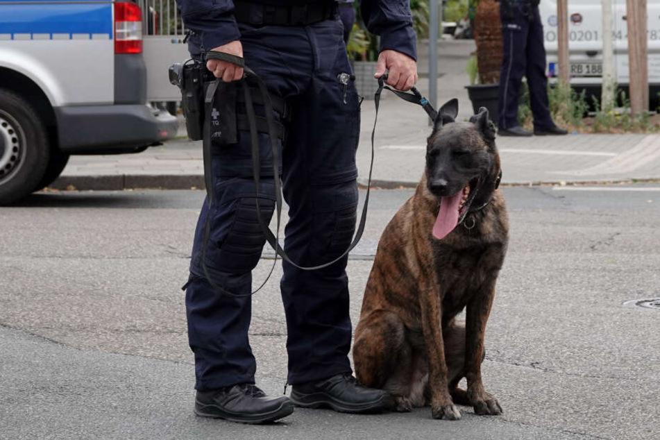 Ein Polizeihund hat in Soest einen Geldautomaten-Aufbrecher gestellt. (Symbolbild)