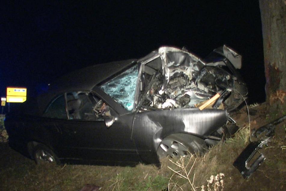 Horror-Unfall! Frau rast mit Mercedes gegen Baum: Sofort tot