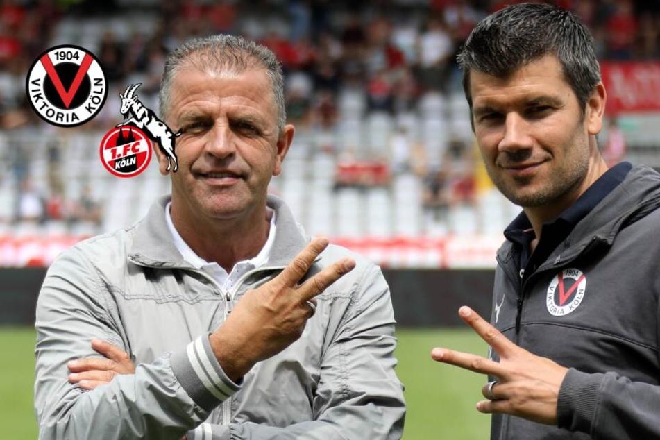 Kölner Derby: Viktoria Köln freut sich auf Duell mit dem FC
