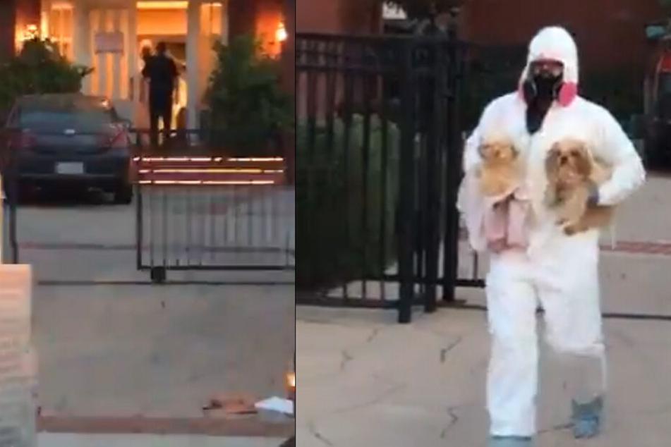 In einem Live-Video von Jory Rand sieht man, wie Helfer die Hunde aus dem Haus tragen.
