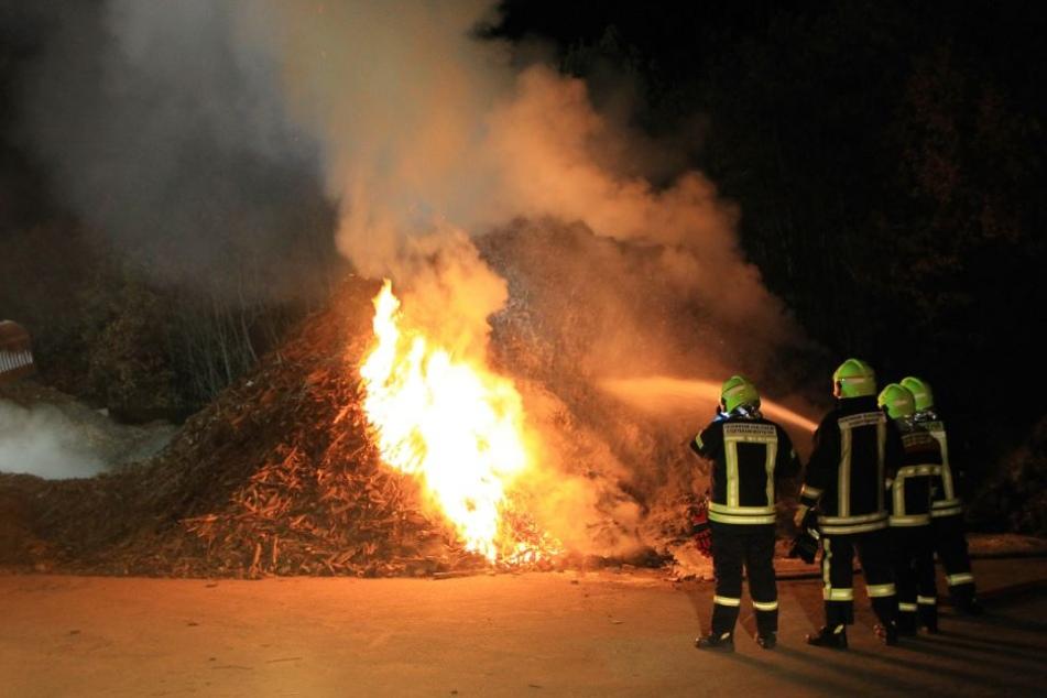 Die Feuerwehr konnte recht schnell verhindern, dass sich das Feuer ausbreitete.