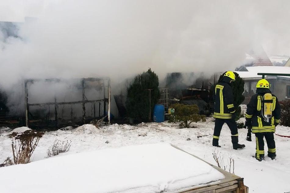 40 Tauben und sechs Hasen verstarben bei dem Brand.