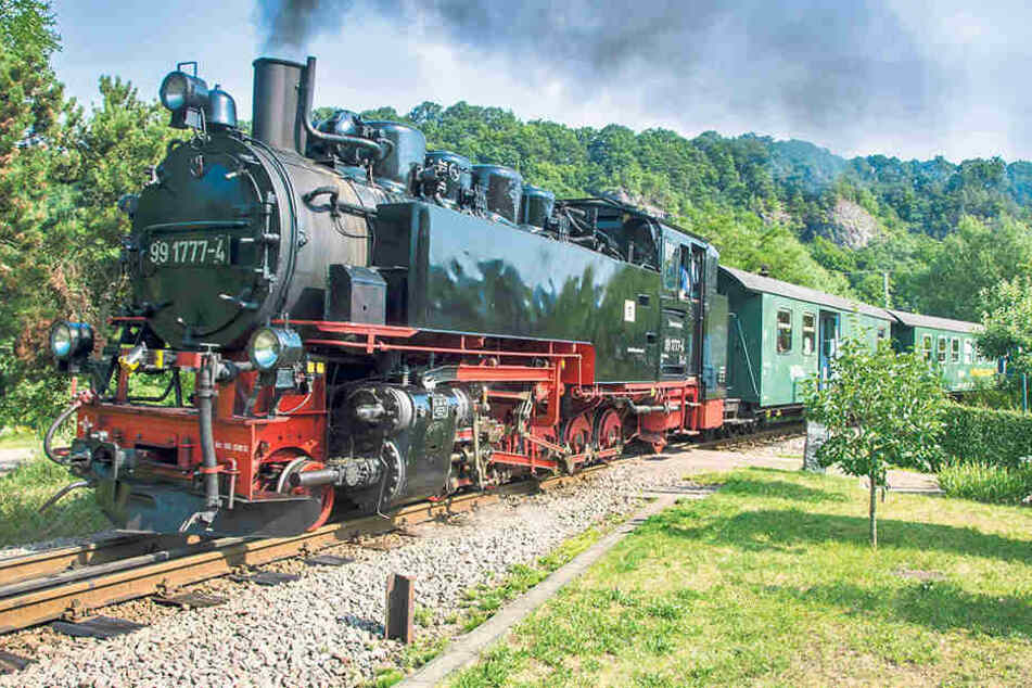 Tu-tuut, hier kommt die Eisenbahn! Auf der Weißeritztalbahn wird bald mächtig  gedampft!