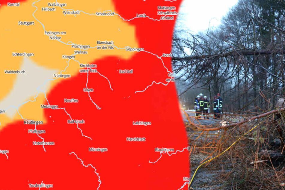 """Auch nach dem Sturmtief """"Burglind"""" (im Bild: Schäden nahe Bad Saulgau) bleibt das Wetter ungemütlich. (Fotomontage)"""