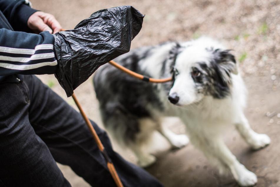 Igitt! Wieder Hundekot in Briefkasten von Geraer Arztpraxis gefunden