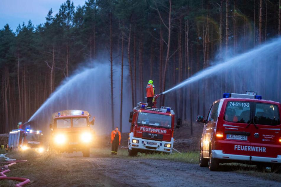 Die Feuerwehr versucht dem Waldbrand Herr zu werden.
