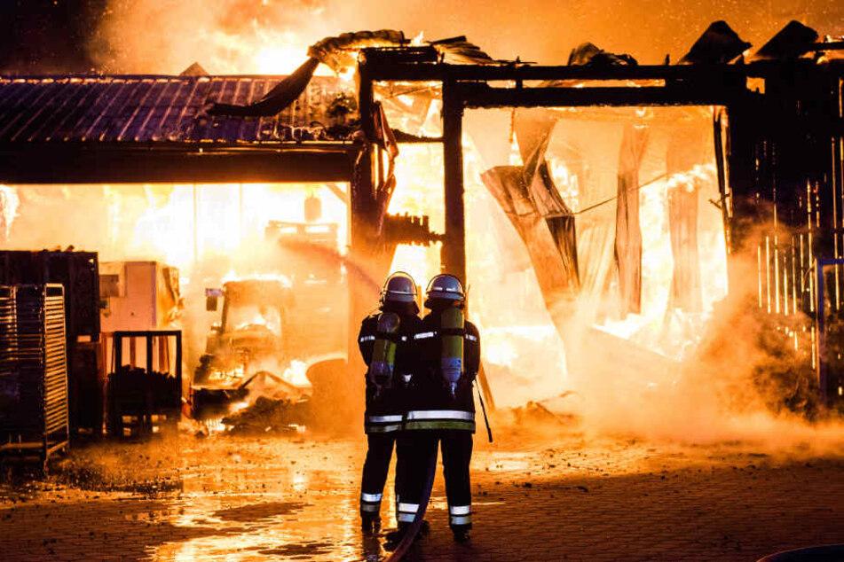 Der Brand in einer Lagerhalle musste von mehreren Hundert Feuerwehrleuten unter Kontrolle gebracht werden.