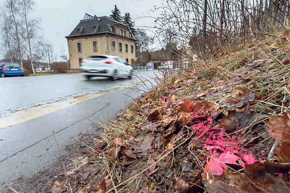 Auf dieser Oelsnitzer Straße wurden vor etwa einem Monat zwei Kinder angefahren. Der Fahrer türmte.