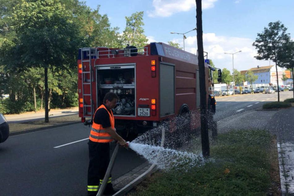 In den letzten Tagen half auch die Feuerwehr bei der Bewässerung der Bäume.
