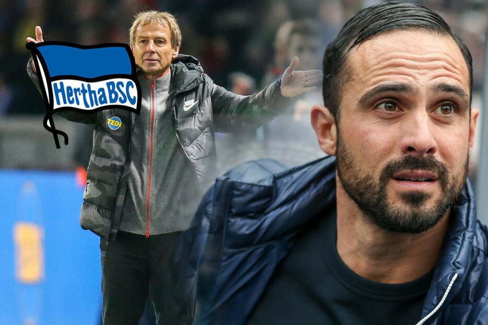 Nach Klinsmann-Beben: Endspiel für Herthas Nouri?