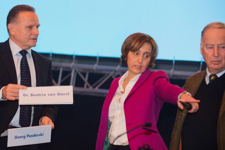 Georg Pazderski, Beatrix von Storch und Alexander Gauland (re.) während des Parteitages.