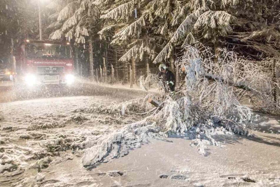 Äste sind unter der Schneelast abgebrochen. Autofahrer sollten besonders vorsichtig sein.