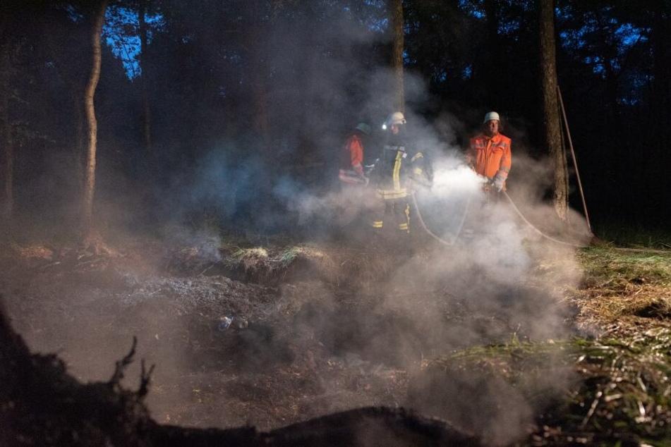 Feuerwehr kämpft stundenlang gegen Flammenmeer im Moor