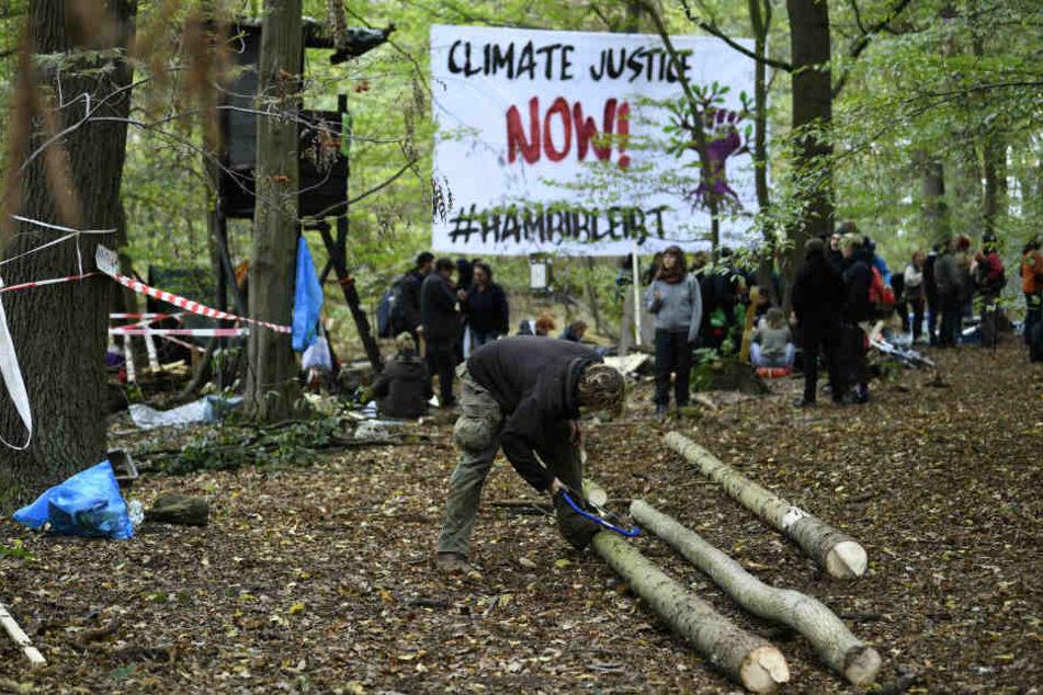 Die Polizei hatte bis zum 2. Oktober alle Baumhäuser im Hambacher Forst abgebaut. Nach dem Rodungsstopp entstehen seit Sonntag (7. Oktober) neue Häuser.