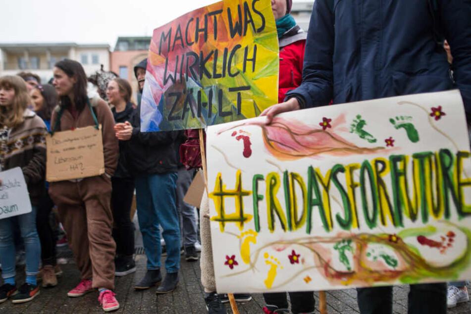 Teilnehmer halten Anfang März während einer Demonstration Schilder hoch.