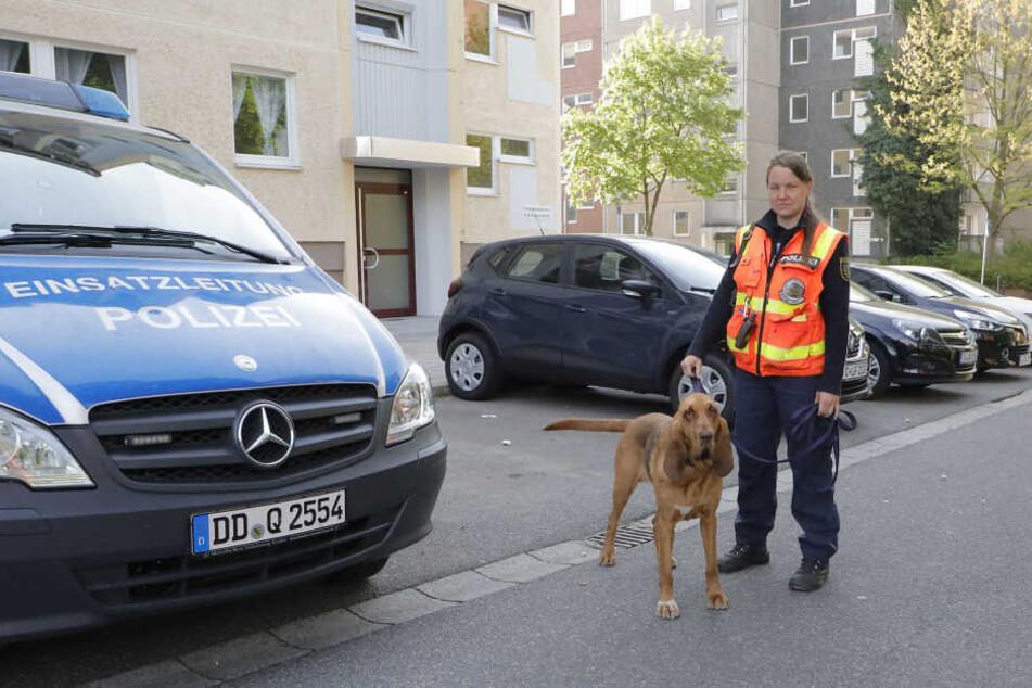 Am Sonntagmorgen suchte die Polizei mit einem Spürhund auf dem Sonnenberg nach dem vermissten Kind.