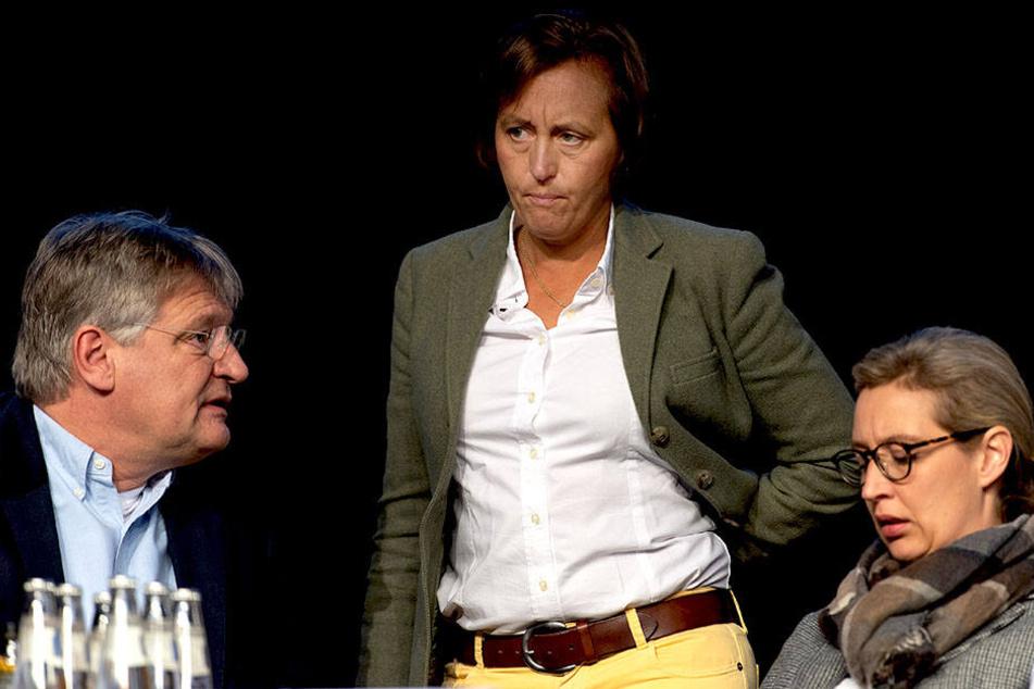 Die AfD-Spitzen Jörg Meuthen, Beatrix von Storch und Alice Weidel (v.l.n.r.) stecken die Köpfe zusammen.