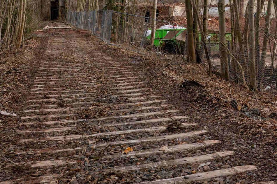 Chemnitz: Chemnitz: Küchwald-Radweg wird gebaut, aber nicht alle sind glücklich