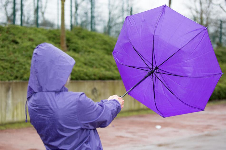 Einen Regenschirm könnt Ihr brauchen. Hoffentlich wird er nicht weggeblasen. (Symbolbild).