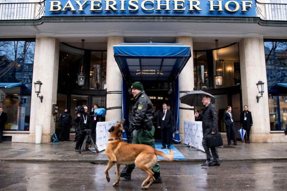 Ein Sprengstoff-Spürhund sucht vor der Sicherheitskonferenz 2018 das Gelände ab.