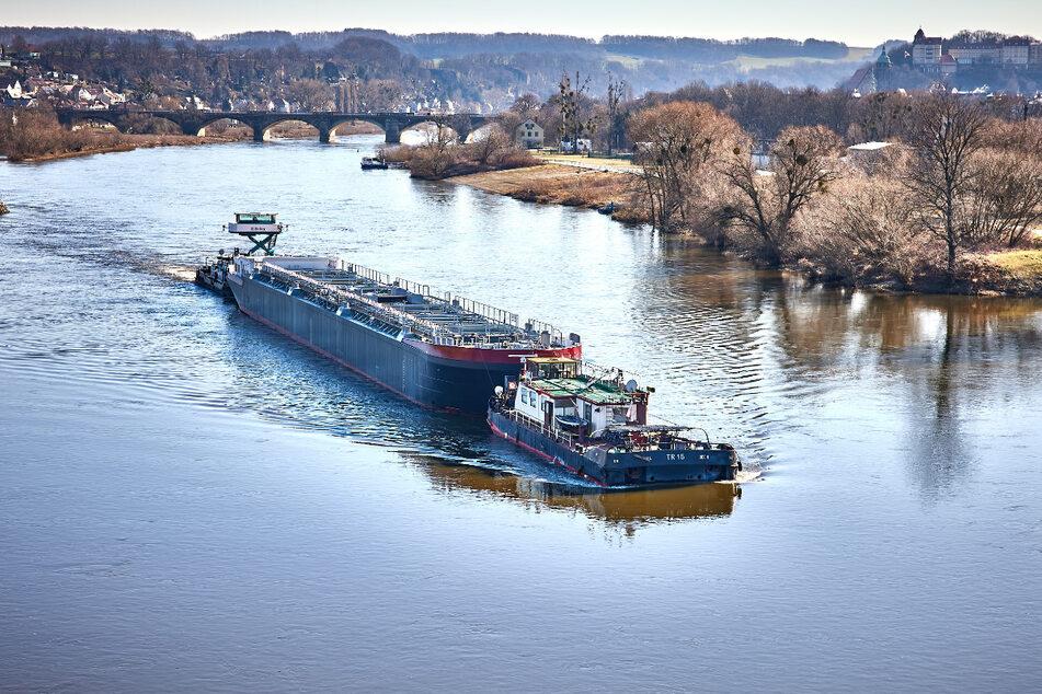 Langer Lulatsch auf der Elbe unterwegs
