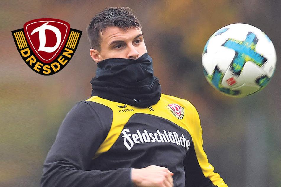 Der Hoffnungsträger bei Dynamo Dresden heißt Philip Heise