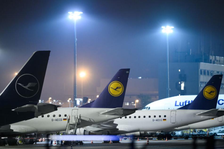 Flugbegleiter-Streiks bei der Lufthansa kommen noch in diesem Jahr!