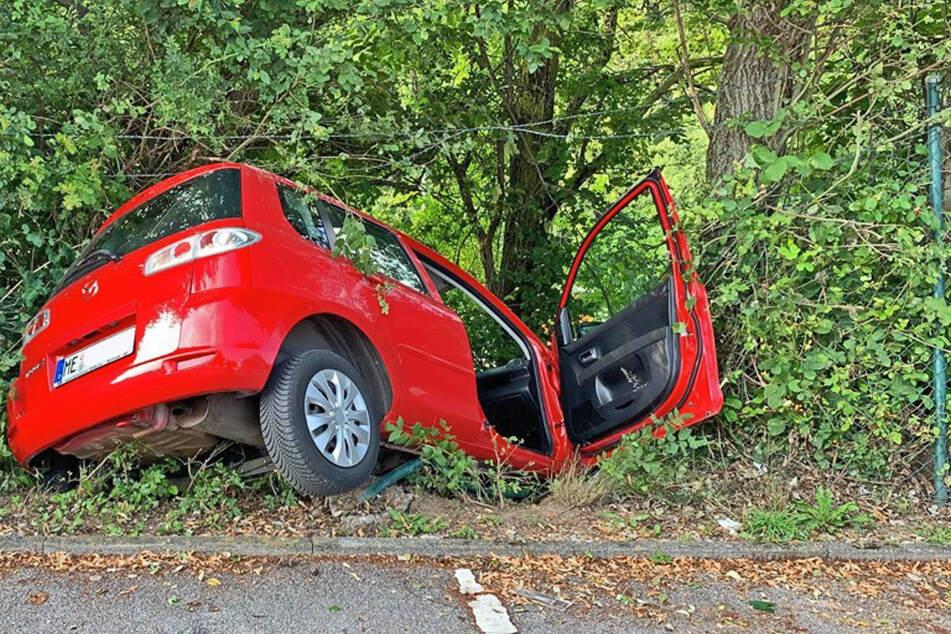 Der 80 Jahre alte Senior fuhr mit seinem Wagen erst durch einen Zaun und kam vor einem Baum zum Stehen.