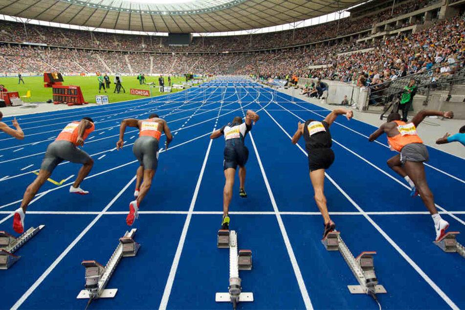 Knapp 1.600 Athleten treten vom 7. bis 12. August gegeneinander an.