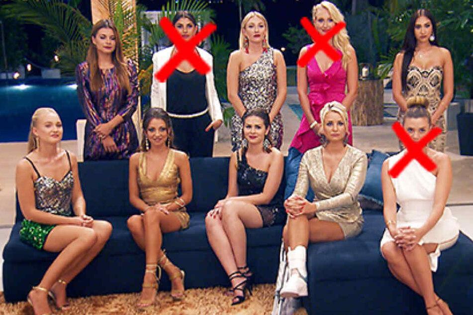 Drei Damen bekamen am Mittwoch keine Rose. Noch dabei: Maxime (oben, v.l.), Jessica, Samira, Svenja (unten, v.l.), Kristina, Janine Christin und Carina.