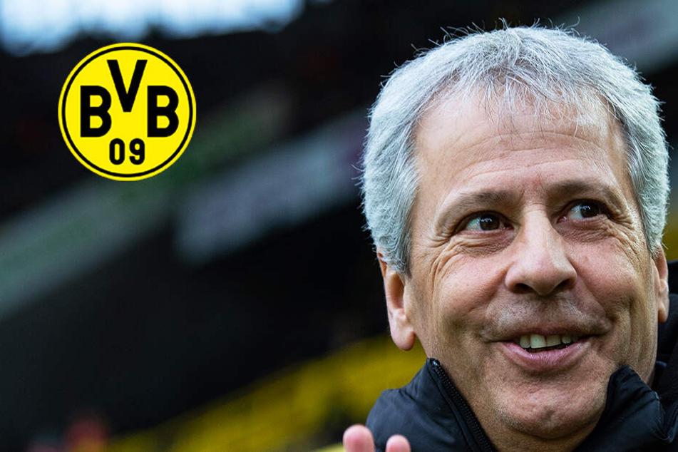 Fix: BVB verlängert den Vertrag mit Trainer Lucien Favre!