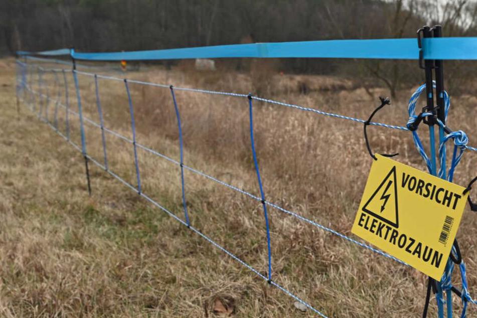 Vorsicht: Der Zaun steht unter Strom!